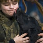 boy being kissed by a dog